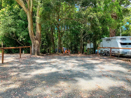 Binna Burra Rainforest Campsite